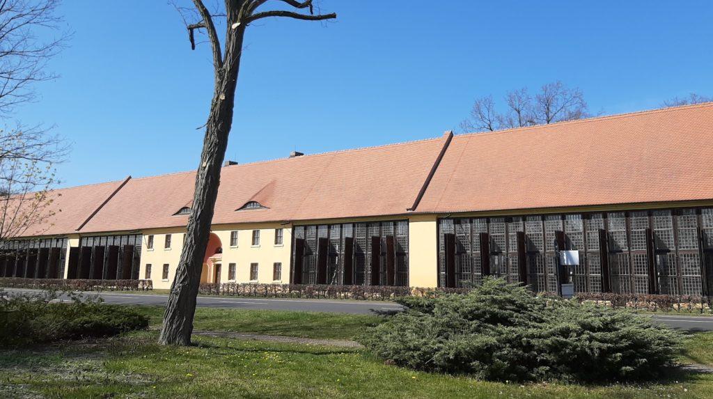 FrauenOrt Schloss Oranienbaum_Park Orangerie